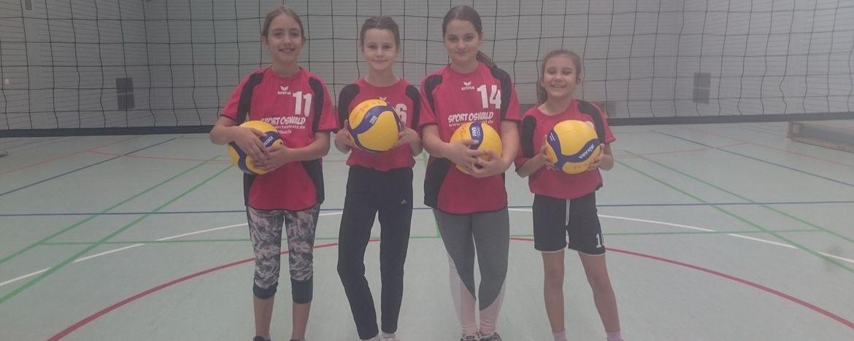 Willkommen auf der Seite der Volleyball Abteilung